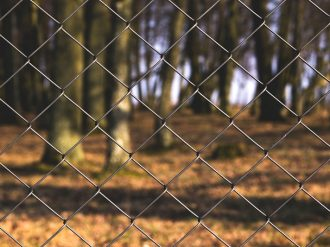 chain-link-close-up-fence-69486
